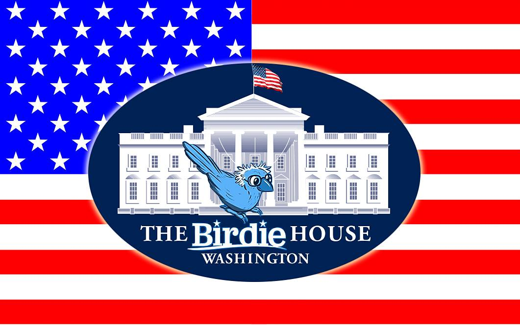 Put a Bernie Sanders in the White House