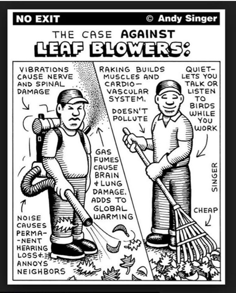 The Case Against Leaf Blowers by Singer